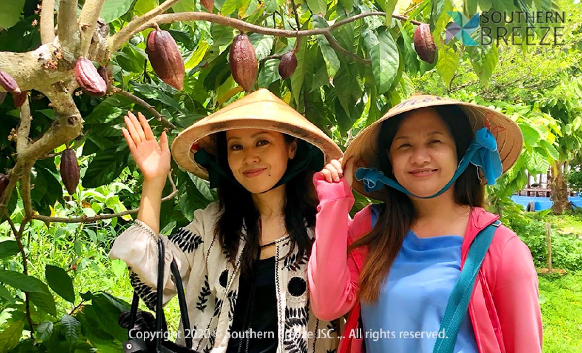一番人気のツアー!一日:大河メコンデルタクルーズ(ミトー) ベトナム名物のココナッツキャンディ、蜂蜜農園見学、メコン名物料理「象耳魚」の昼食付き